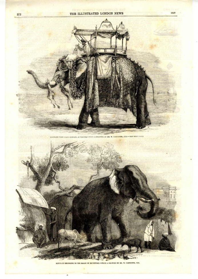 1857 INDIAN ELEPHANT Antique Print from Engraving HOWDAH RAJAH BHURTPORE MAHOUT